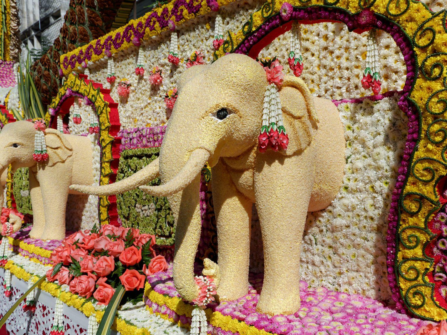 Flower Festivals Around The World to Attend in 2020
